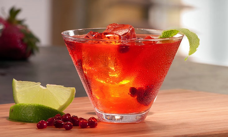 Recipe-website-Jalisco-Rose