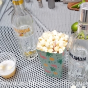 fun vodka cocktails