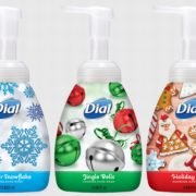 Dial Holiday Foaming Hand Washes