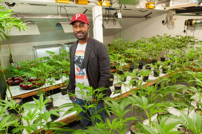 black owned cannabis growers