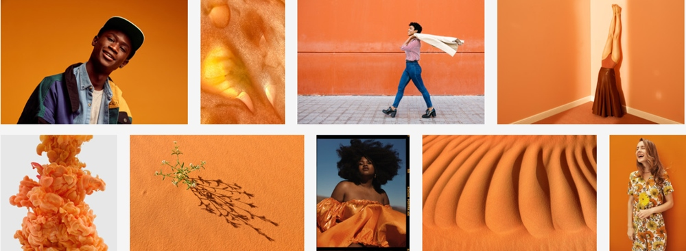 Adobe Stock Pantone Color Trend Report SS2020