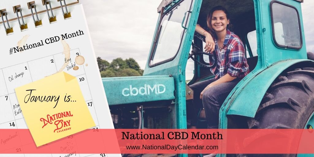 how to celebrate national cbd month this january  my life on and off the guest list