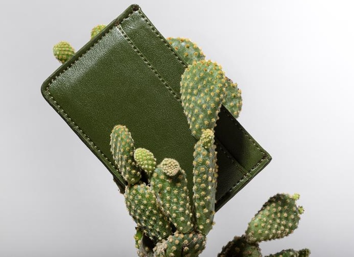 CACTO Celebrates Being the First Carbon-Negative Fashion Brand in the Americas