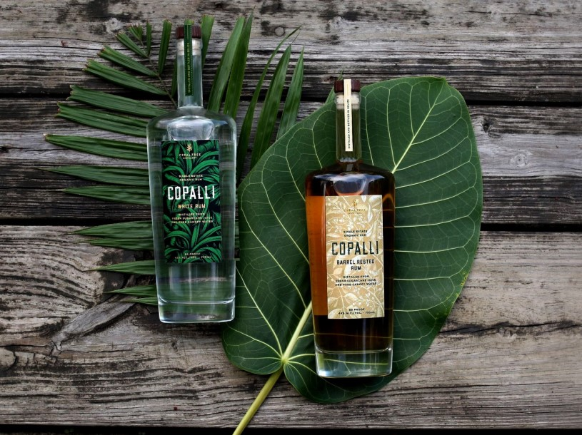 Raise a Glass to National Rum Day With Copalli Rum Cocktails